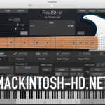MusicLab RealStrat [macOS]