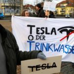 German court orders Tesla to stop cutting trees near Berlin