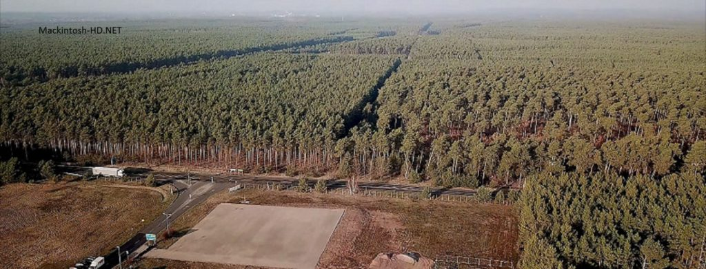Tesla will still destroy 92 hectares of forest to build its plant