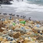 Eco-friendly plastic can solve one of the main problems on Earth