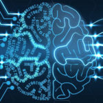 Researchers have created the first neural network with living brain cells